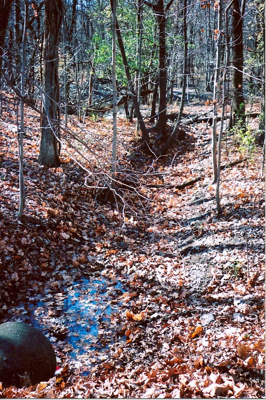 Glenview Creek  Wikipedia