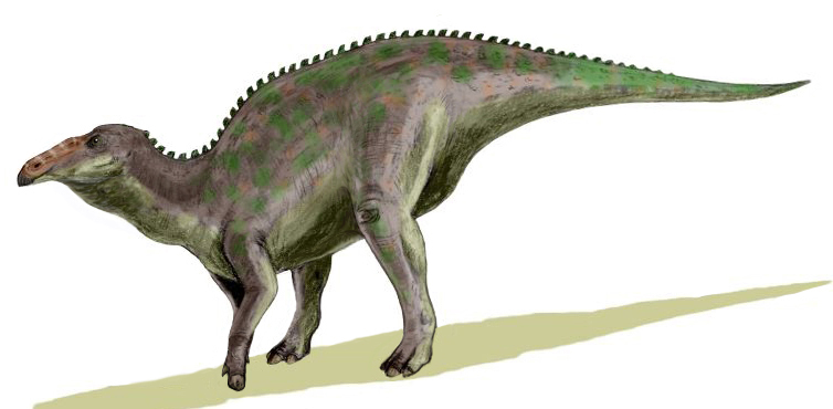 File:Anatotitan BW.jpg
