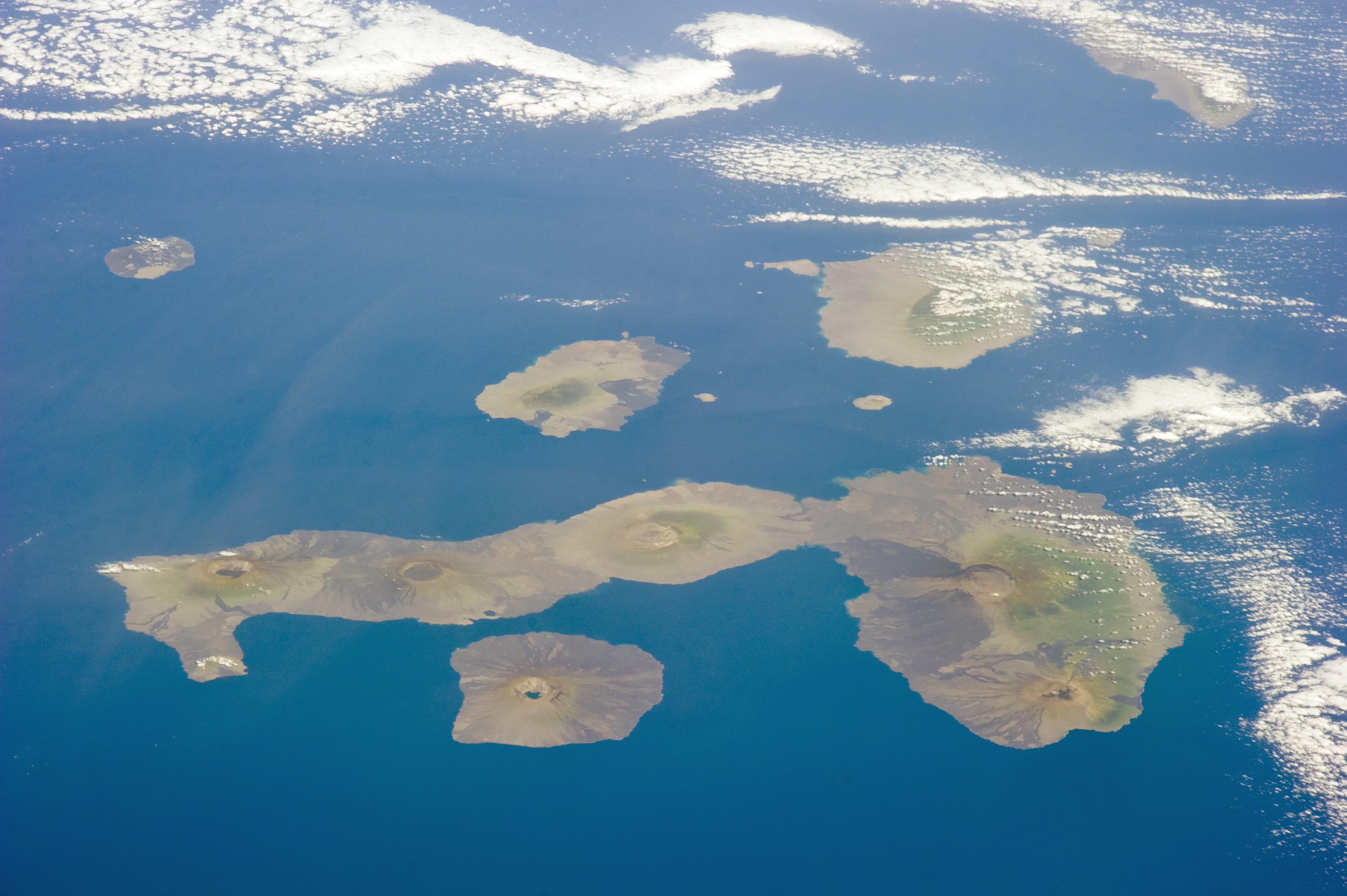 L Origine Della Biodiversita Delle Galapagos