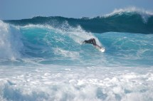 File Surfer Banzai Pipeline North Shore Oahu