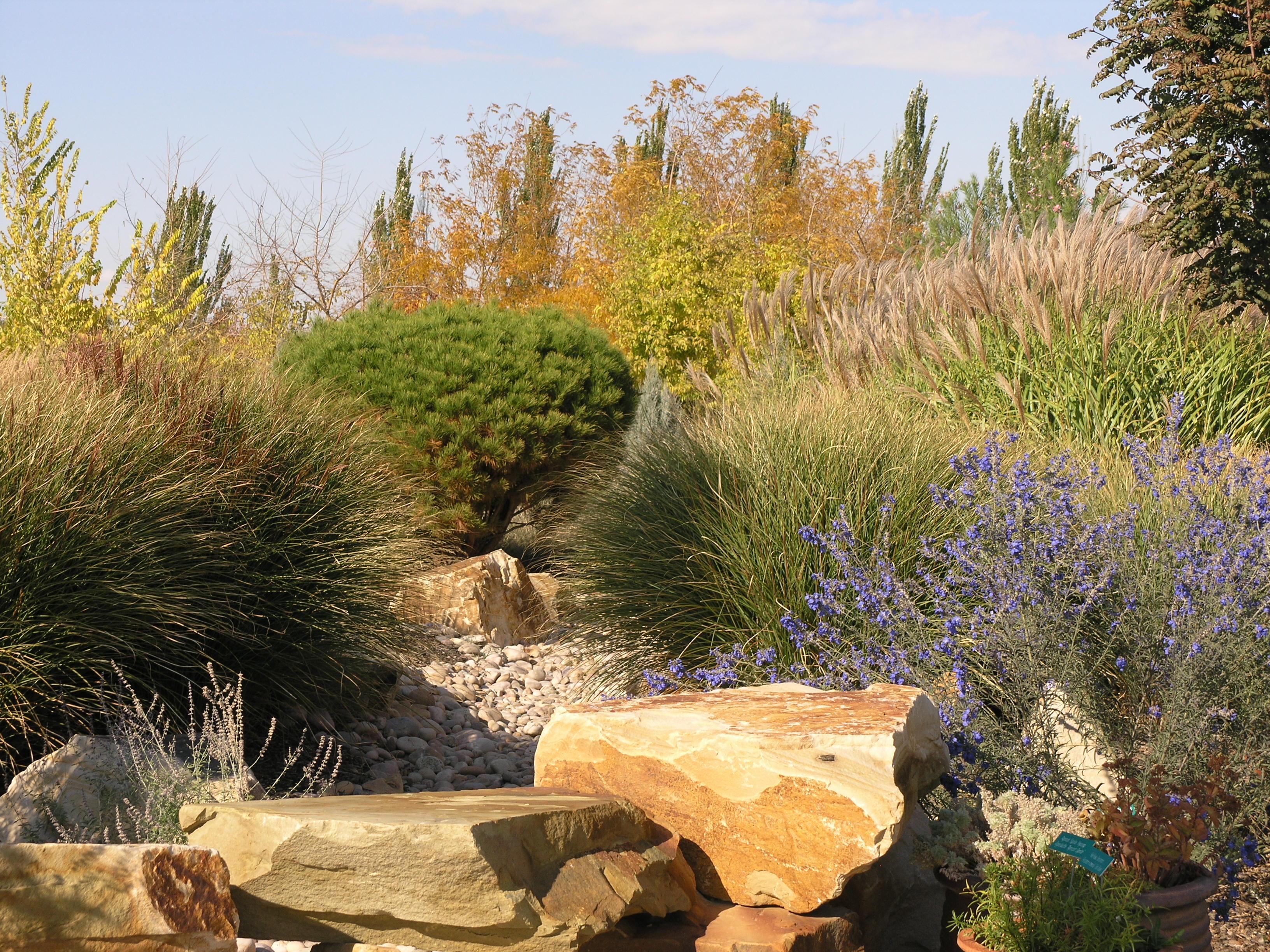 Water Efficient Landscape Ordinance Welo