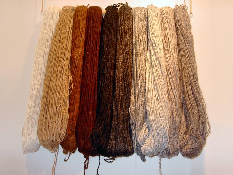 Alpaca-wool. Svenska: Alpackaull