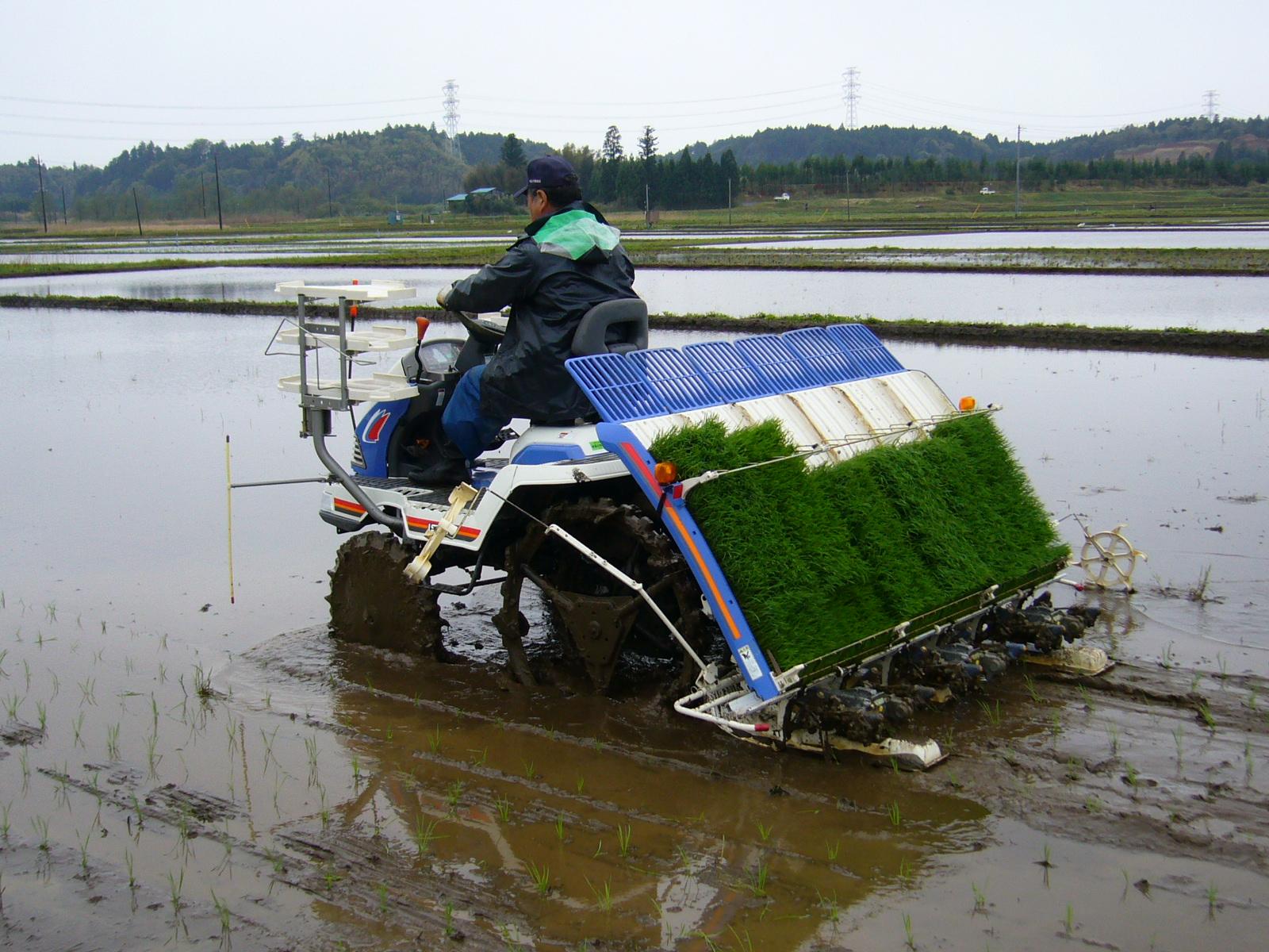 hight resolution of rice transplanter
