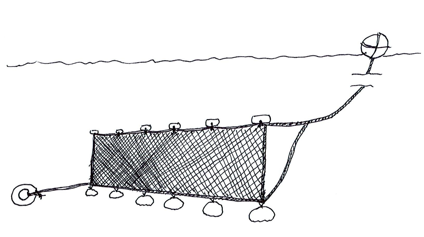 Tangle Net