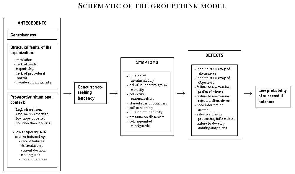 Groupthink schematic