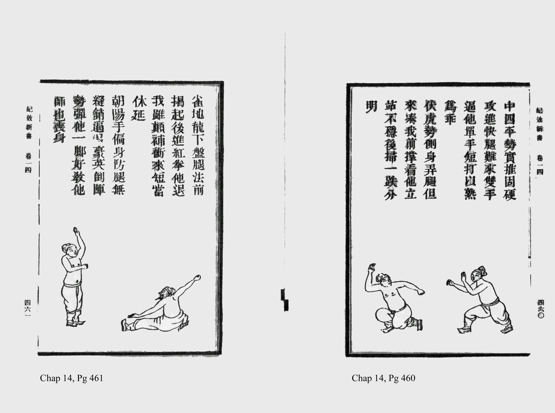 Martial arts manuals