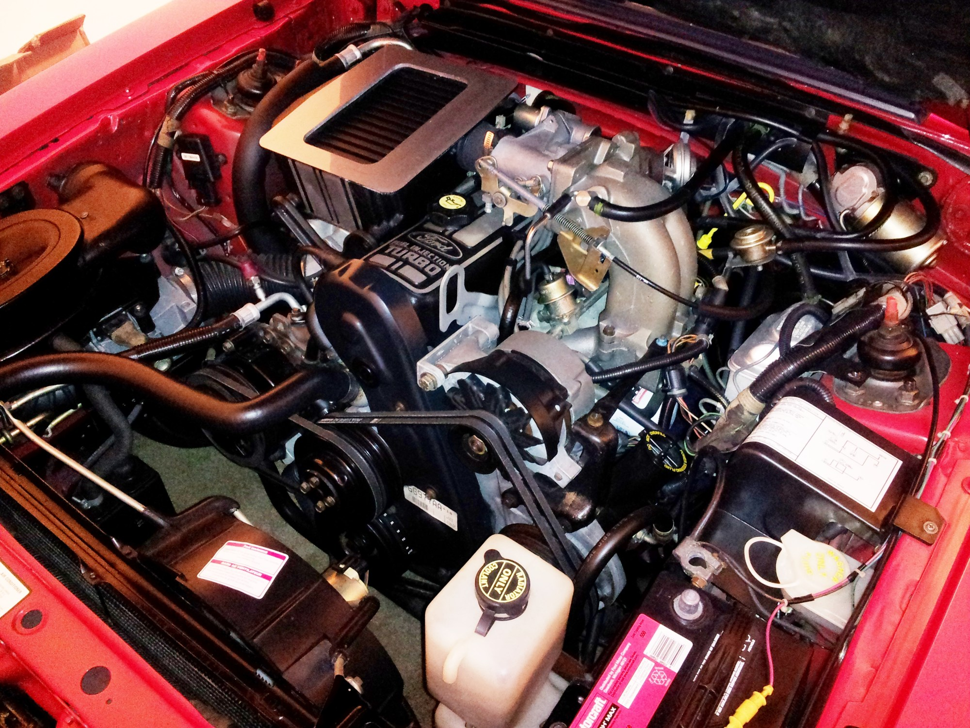 hight resolution of 86 svo engine bay all types 1984 mustang 5 0 19s 20s car and autos