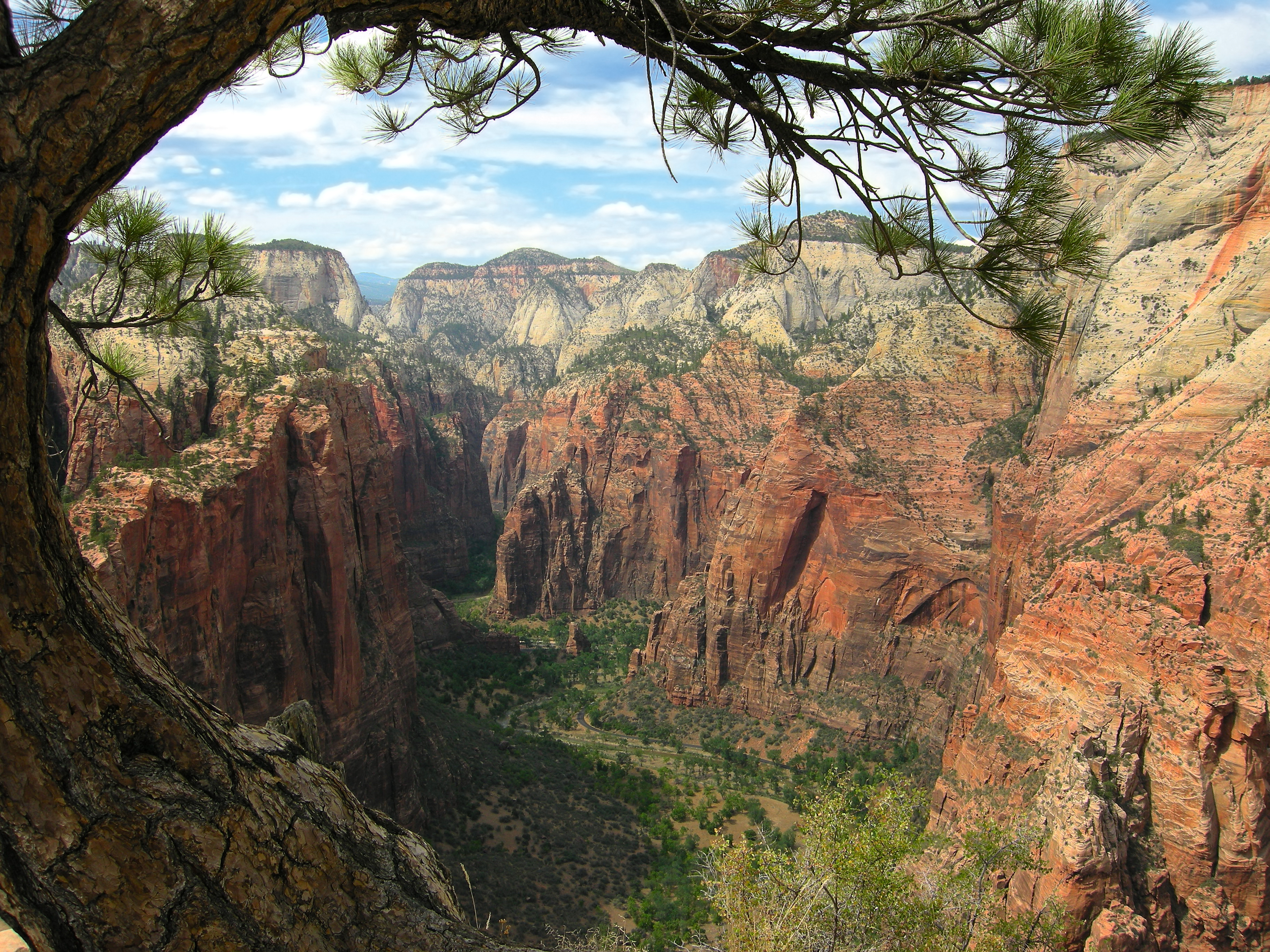 Majestic Zion National Park Angels Landing The Subway Cliffs  Canyons 45 PICS