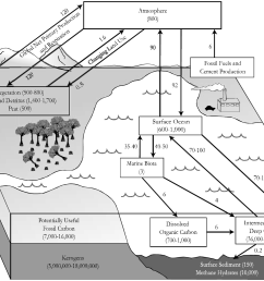 carbon cycle diagram fill in [ 1549 x 1168 Pixel ]