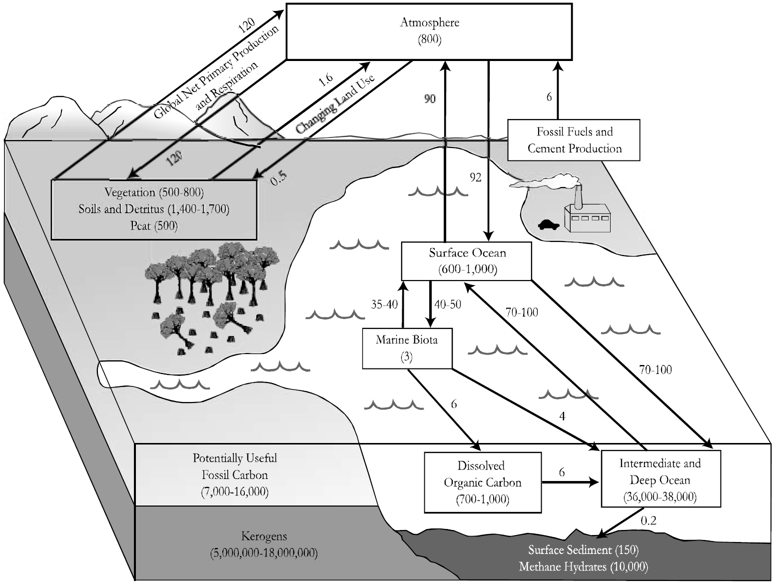 hight resolution of carbon cycle diagram fill in