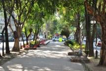 Archivo Avenida Lvaro Obreg Colonia Roma Ciudad De