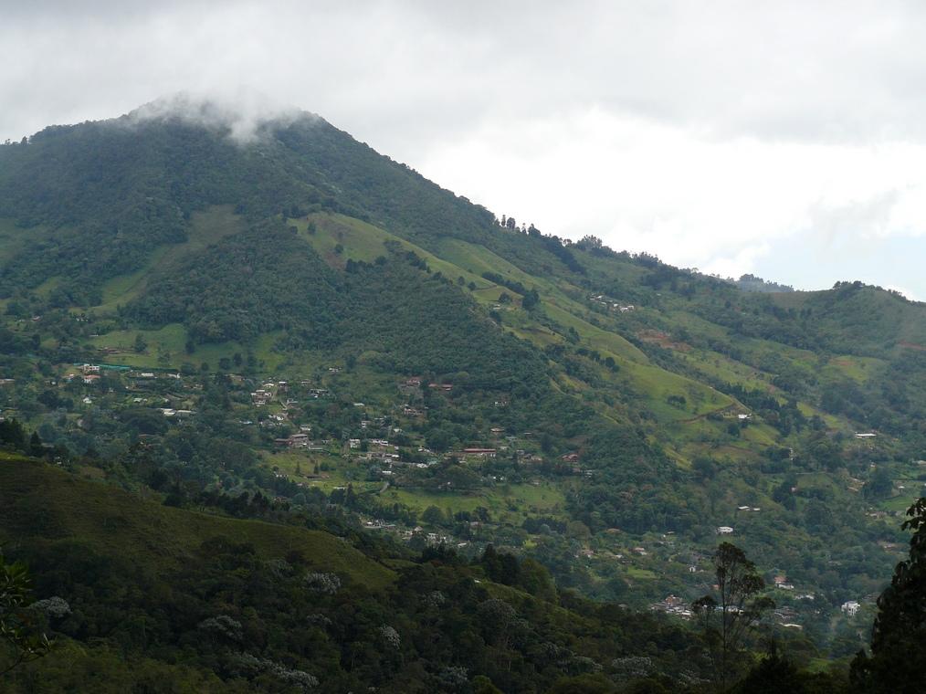 Dapa Valle del Cauca  Wikipedia