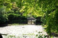 File:Lake outside Ryoan-ji Temple.jpg - Wikimedia Commons