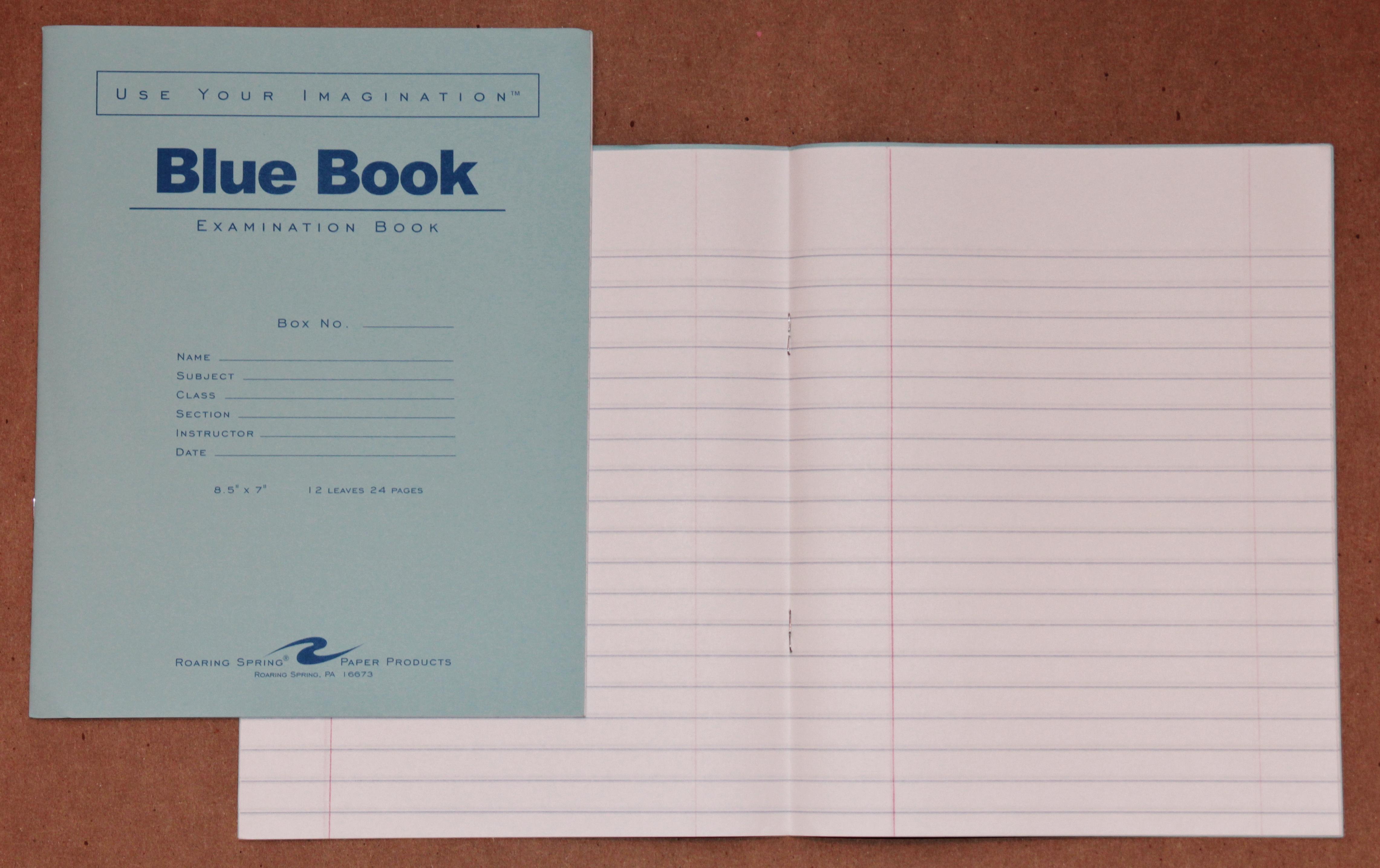 File Blue Book 12 Sheet