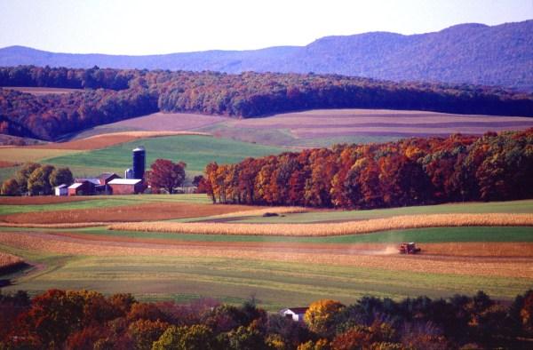 Pennsylvania Colony Farm Land