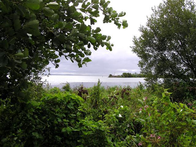 English: Ballyronan Picnic area. A glimpse of ...