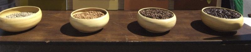 Image Result For Starbucks Coffee Bar