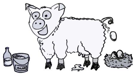Eierlegende Wollmilchsau