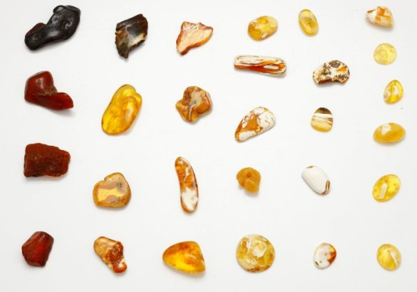 couleurs de l'ambre de la Baltique