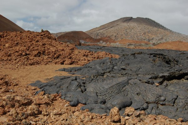Explore Galapagos Islands and you'll find these beautiful active volcanoes! Source: Wikimedia