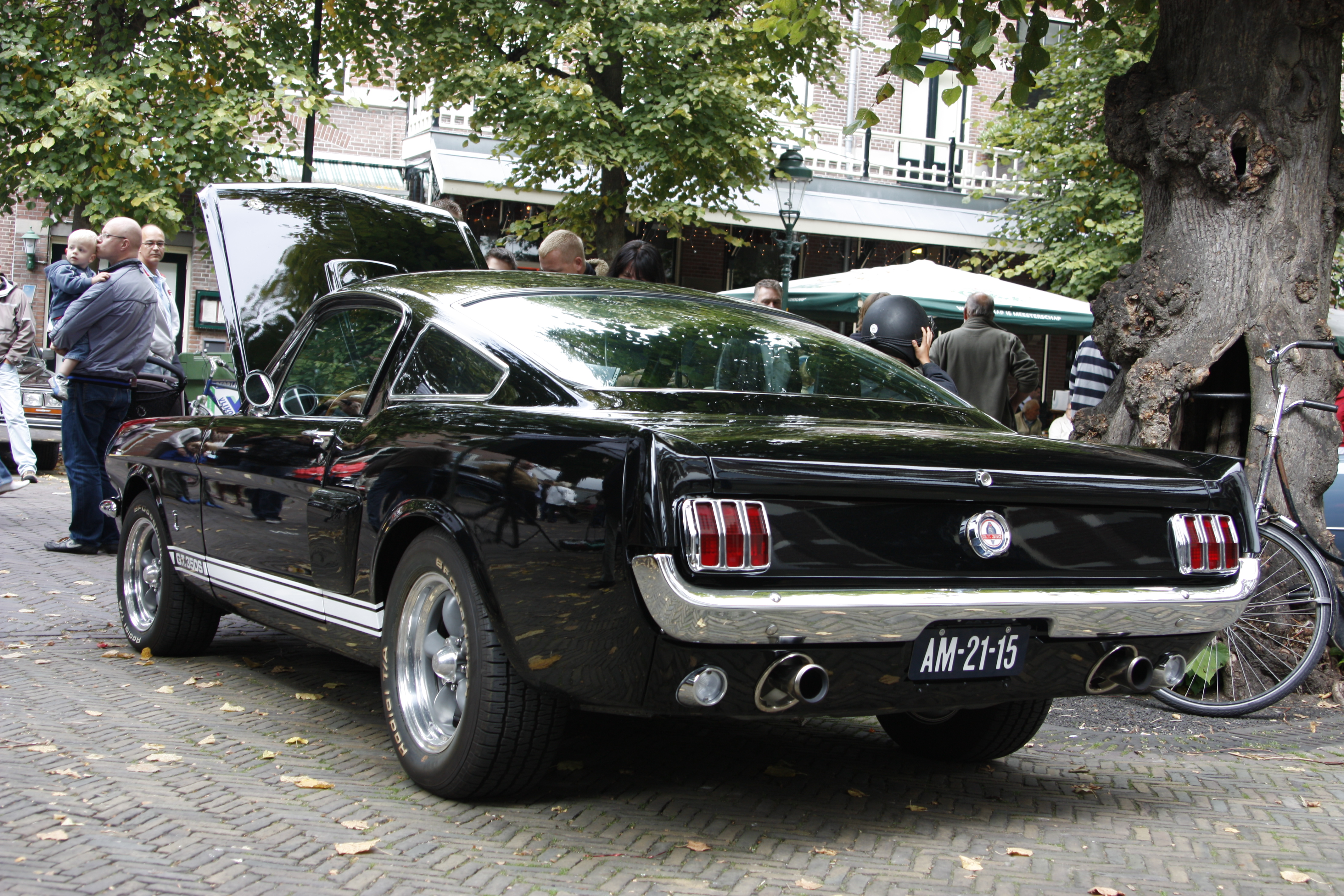We're in the same boat. File Am 21 15 Ford Mustang Fastback Gt 1965 Jpg Wikimedia Commons