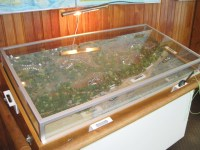 File:Fort Pillow State Park TN 23 museum Ft Pillow diorama ...