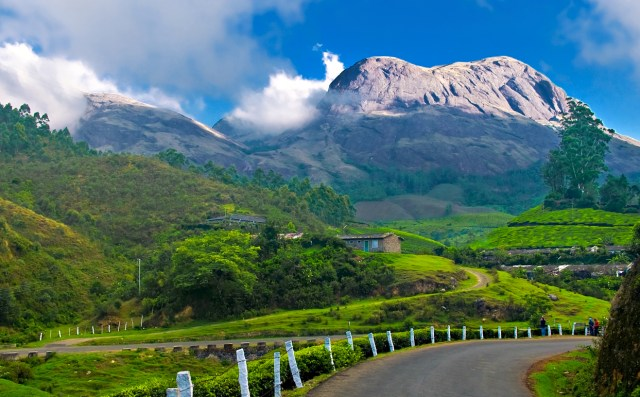 lush green grass hill station India mountains