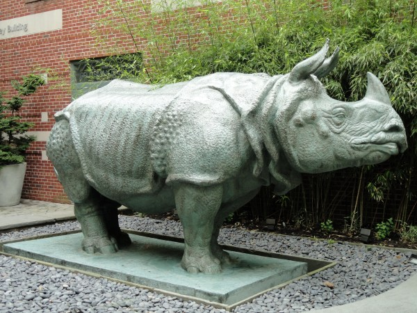 File Rhinoceros Sculpture School Of Museum Fine Arts Boston - Wikimedia
