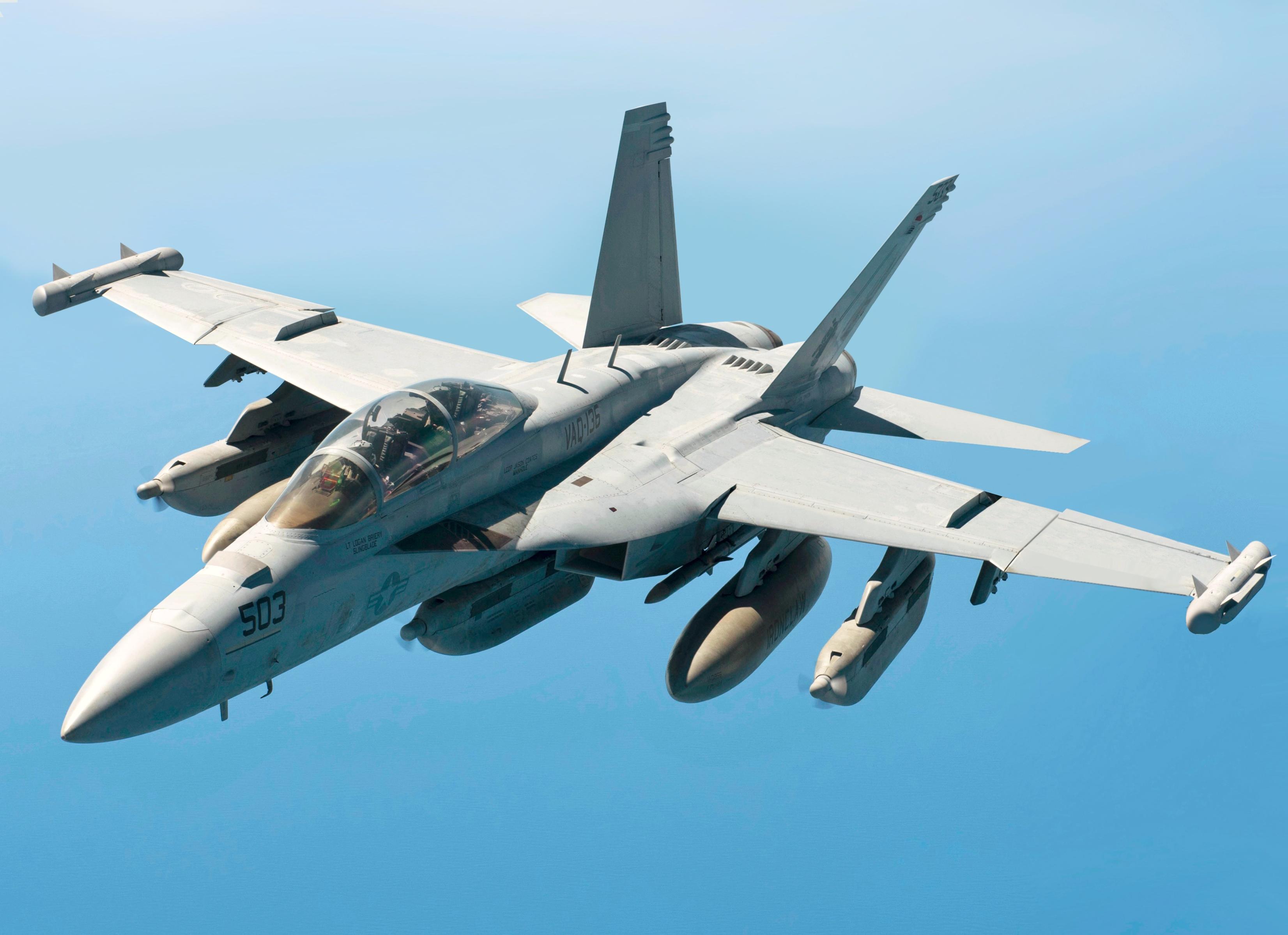"Картинки по запросу EA-18G ""Growler"""