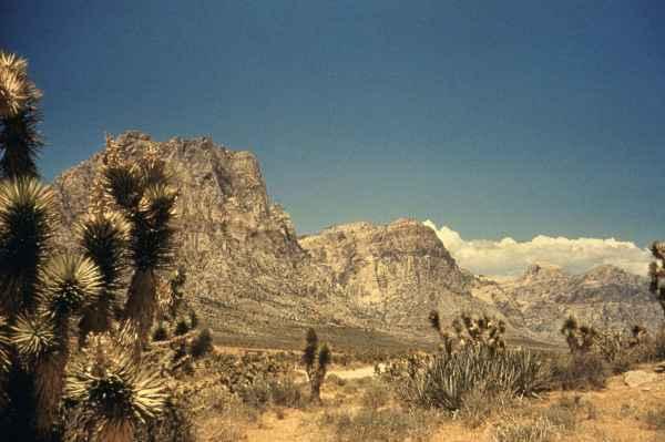 file desert panorama