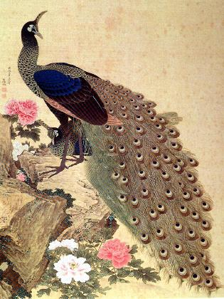 Okyo Peacocks and Peonies