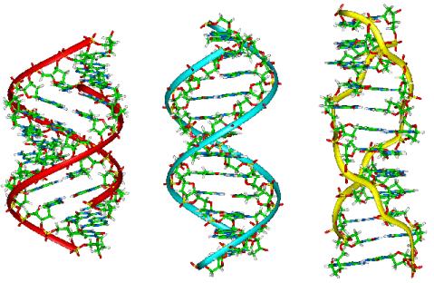 genetics, how to get rid of toenail fungus, dna,