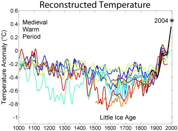 1000 year Temperature Reconstruction