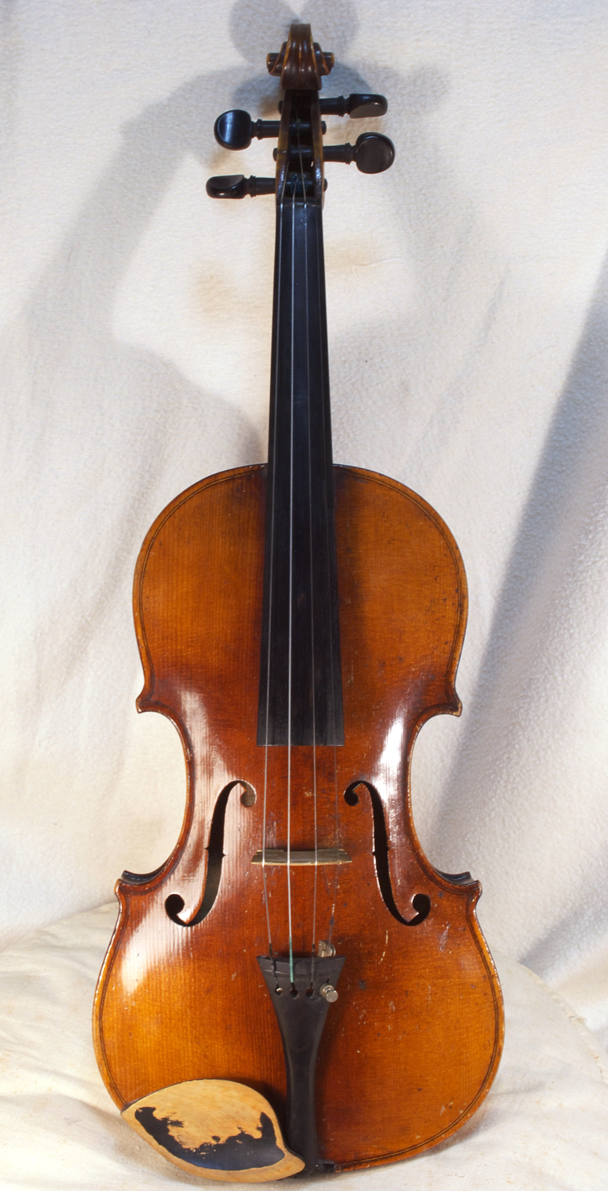Violin by MATANAO (Wikimedia Commons)