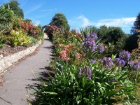 File:Tropical Border and Arch within Ventnor Botanic ...