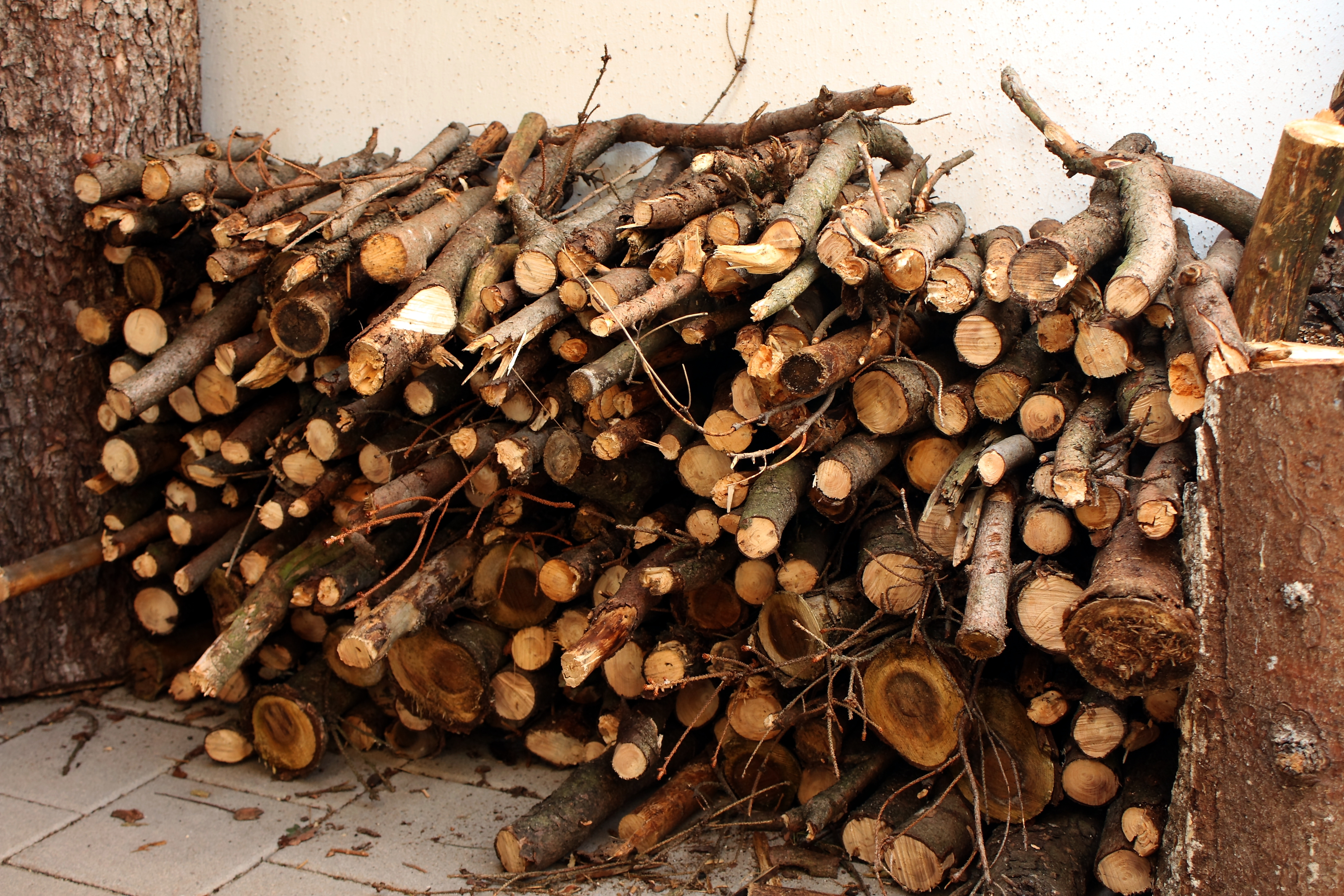 Drying Logs For Furniture