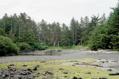 Gwaii Haanas National Park Reserve – Travel guide at ...