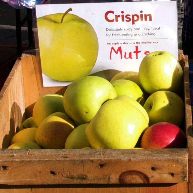 Mutsu apple  Wikipedia