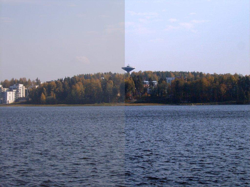 Contrast (vision)  Wikipedia