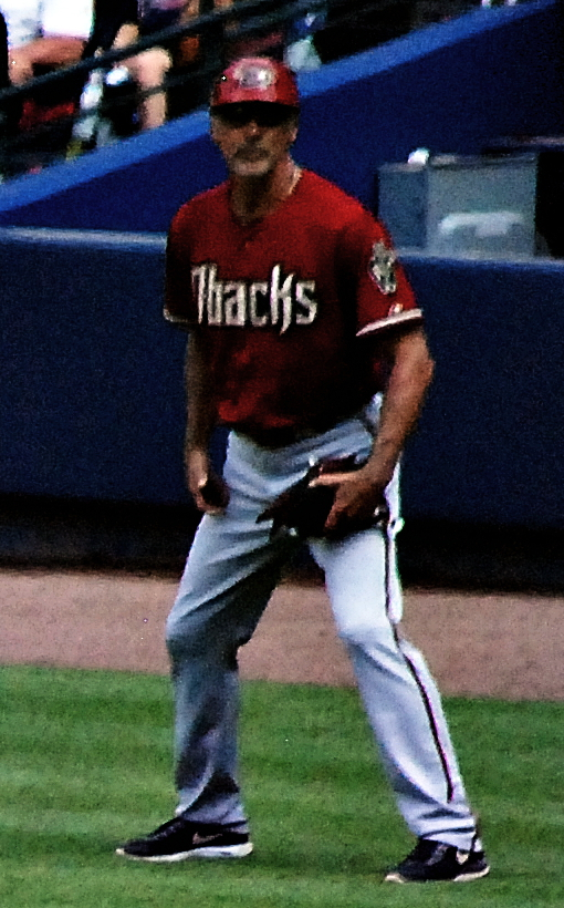 Arizona Diamondbacks Baseball