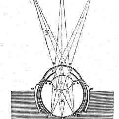 Camera Obscura Diagram Servo Motor Wiring File Descartes Of Ocular Refraction Wellcome