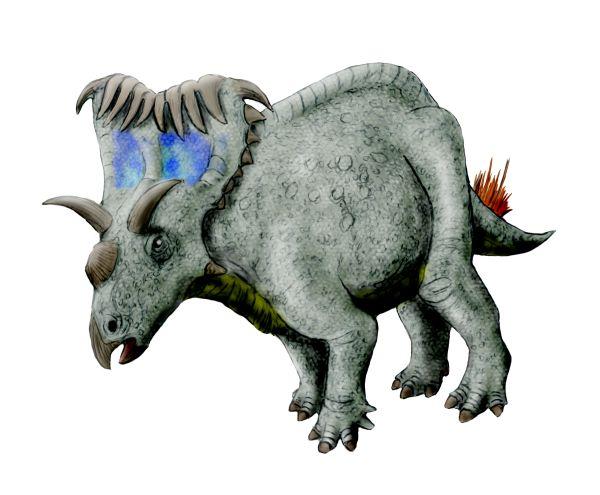 Imagen de un Kosmoceratops de la Wikipedia, para hacerse una idea lejana.