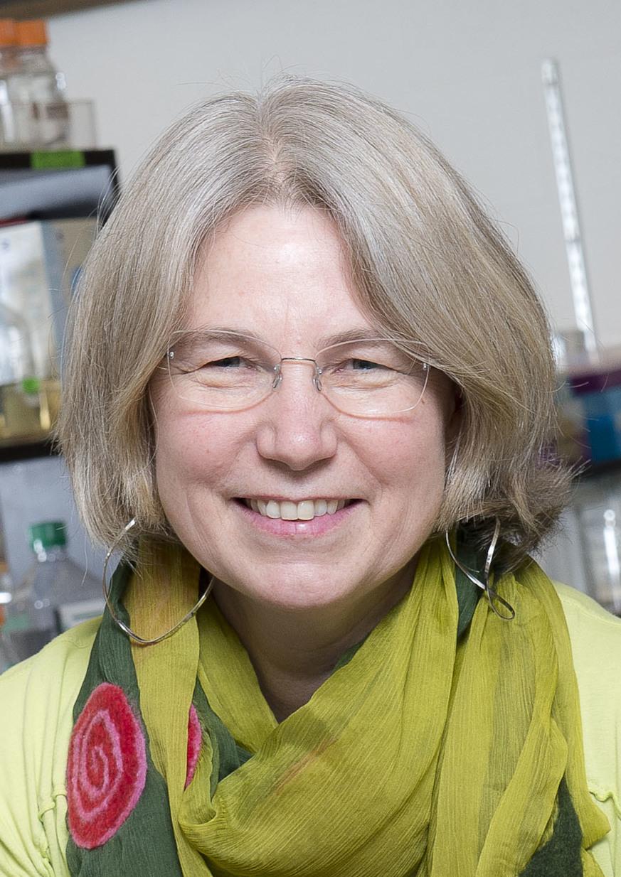 Lynne Quarmby  Wikipedia