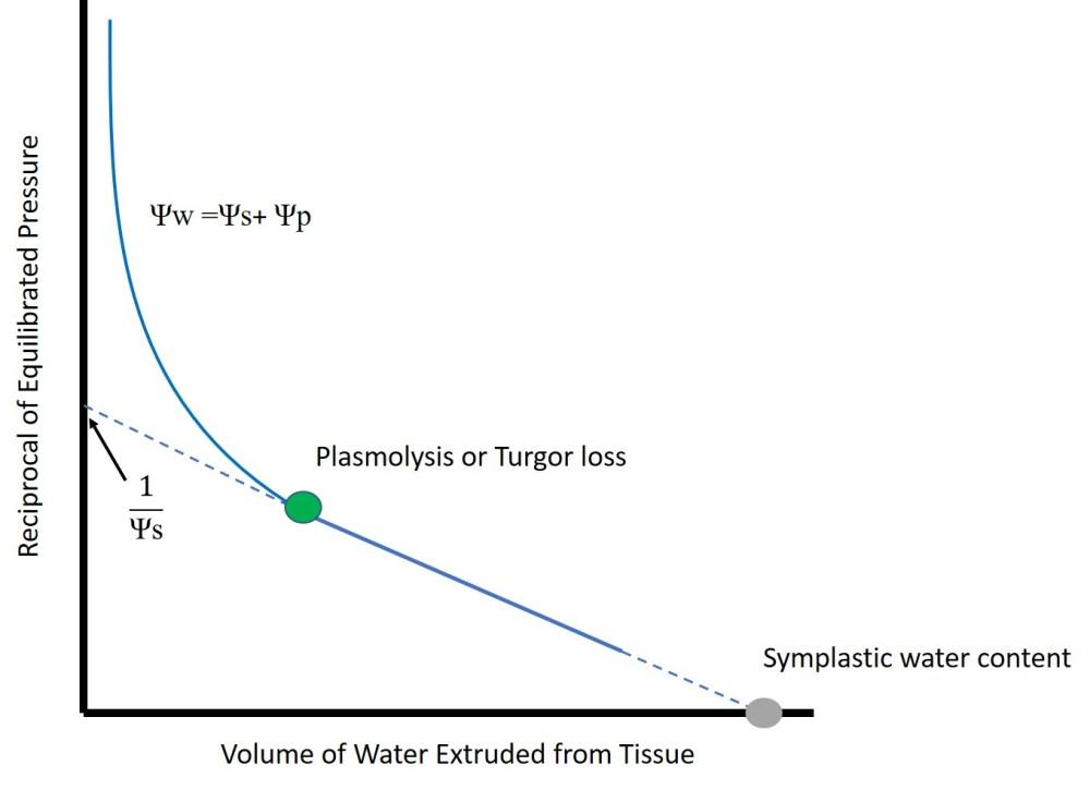 medium resolution of file p v curve diagram jpg