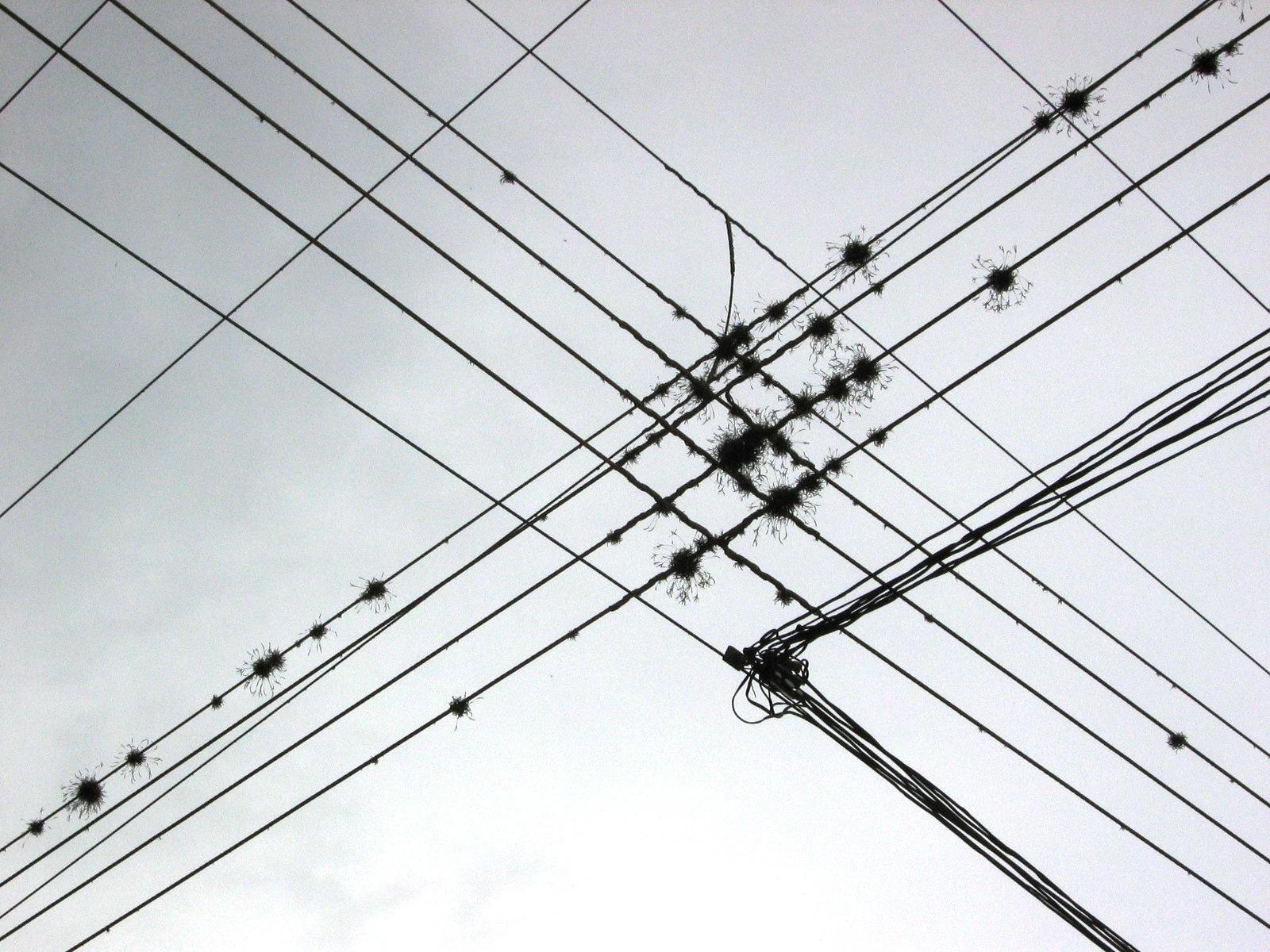 wire wikipedia