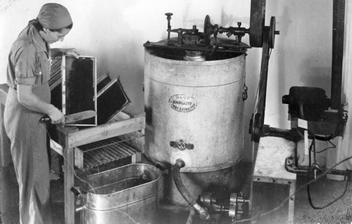 Honey extractor  Wikipedia