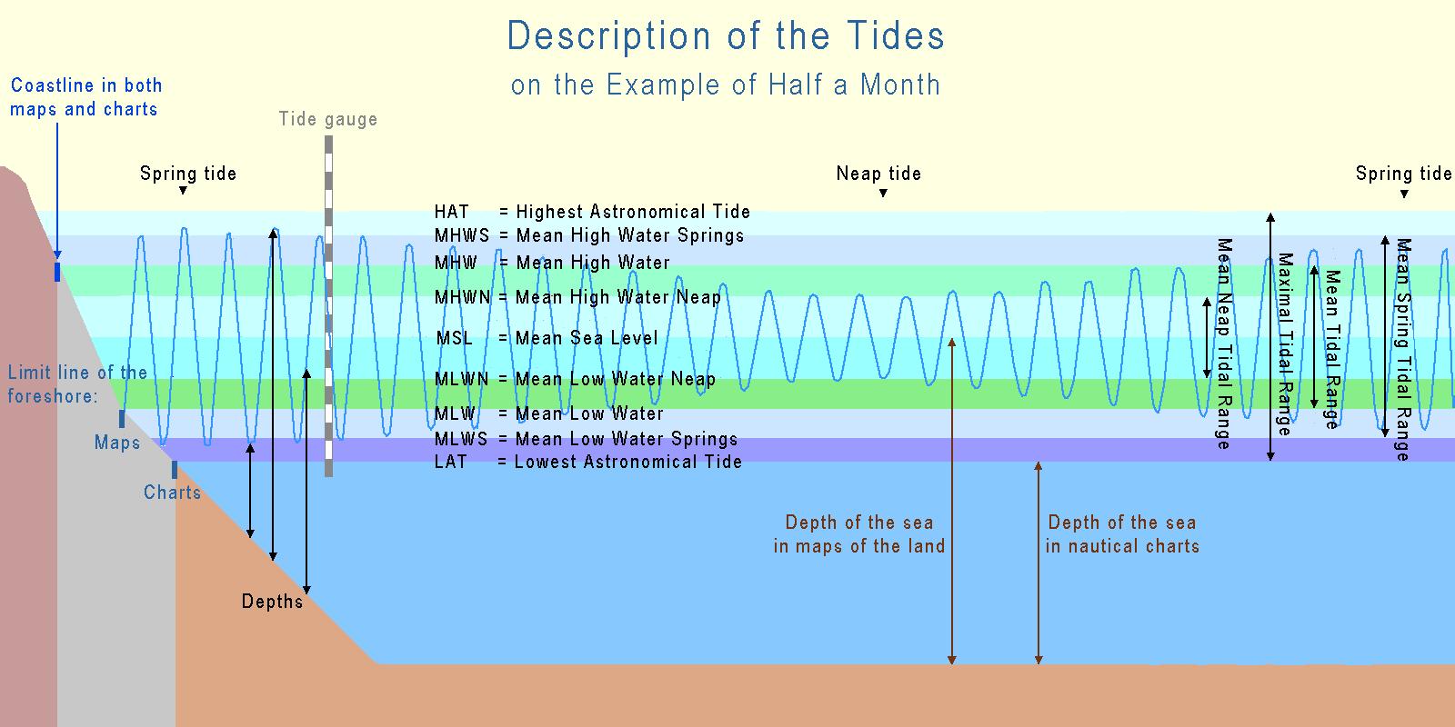 Wiki Tide
