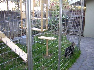 cat enclosure wikipedia