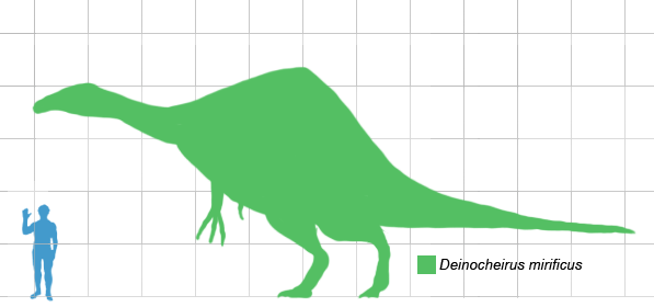 https://i0.wp.com/upload.wikimedia.org/wikipedia/commons/c/c4/Deinocheirus_scale.png