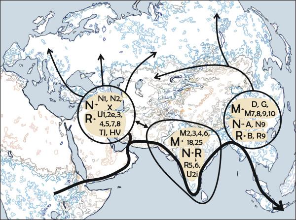 File:Peopling of eurasia.jpg